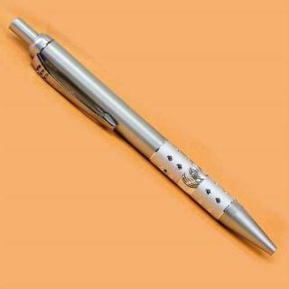 Bolígrafos Plateados (precio unidad)