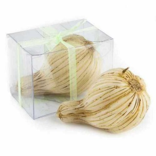 Velas de ajo (precio unidad)
